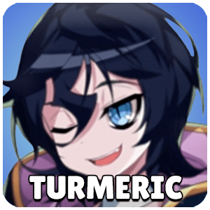 Turmeric Hero Icon Grand Chase